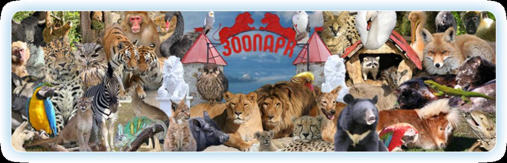 zoo_main-1024x330